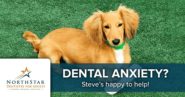 Dental anxiety? Steve's happy to help!